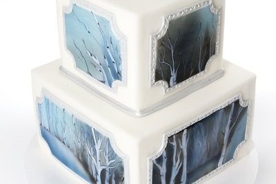 Painting Winter Cake